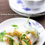 Spring Rolls with Sesame Ponzu Vinaigrette (Guest Post)