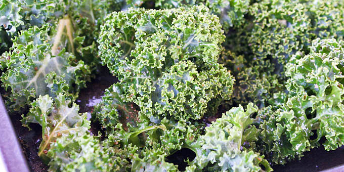 Crispy Kale Chips Seasoned with Garam Masala-8