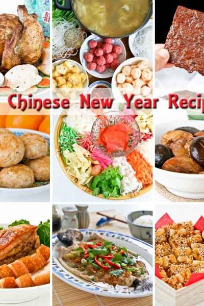 28 Chinese New Year Recipes - ushering in the Year of the Horse with delicious and auspicious dishes for a prosperous year ahead. | RotiNRice.com