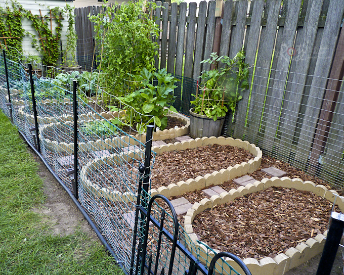 Our Vegetable Garden - Part 2 is an expansion of the existing lot to include 2 more vegetable beds for fall planting of corn and green beans. | RotiNRice.com