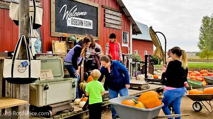 The sights and sounds of Autumn in Colorado 2018 with gorgeous fall colors and a visit to Osborn Farm for pumpkins and squashes. | RotiNRice.com